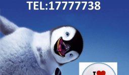 FB IMG 1586775044935