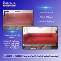 FB IMG 1600518652072 تعقيم وتنظيف المنازل والمكاتب والمحلات بافضل الاسعار مع شركة انسكتا