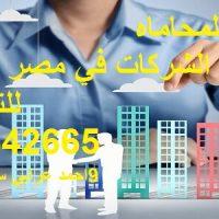 صورة- محامي تأسيس الشركات في مصر