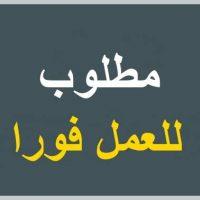 صورة- مطلوب علي وجه السرعه موظفين خدمه عملاء