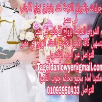 81284665 1071877366508431 2895481653189148672 n محامى زواج الاجانب