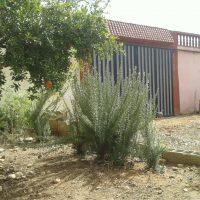 أرض سكنية للبيع ( المغرب )