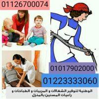 79880084 453181232048882 3722291895943036928 n