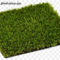 kisspng lawn artificial turf artificial knowing carpet lan turf 5ac63d82e95598.5491309415229413149557