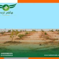 25 2 2021 كمبوند مزارع الهاشمية