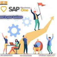 BBBB1 Professional SAP B1 Consultant