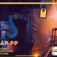PP Online Professional SAP PP Consultant TracK