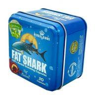 فات شارك للتخسيس FAT SHARK