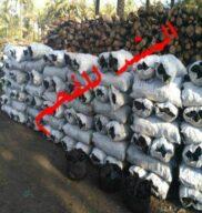 شركة المشد لبيع فحم نباتى طبيعى